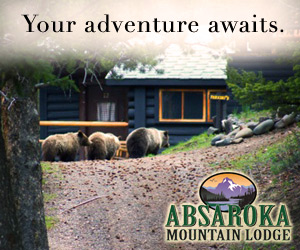 Absaroka Mountain Lodge: Cabins & Horseback Rides - Comfortable cabins right on the eastern edge of Yellowstone Nat'l Park. Dine in historic lodge, once owned by Buffalo Bill Cody's grandson. Enjoy real Western hospitality.