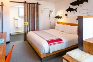The LARK - cool, boutique hotel in Bozeman
