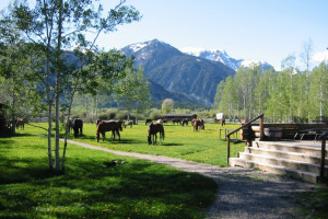 Yellowstone Guest Ranch Getaways | Dude Ranchers