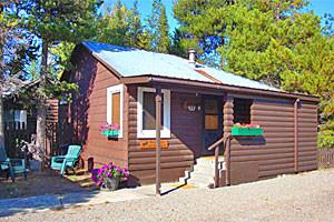 Yellowstone Wildlife Cabins - September openings